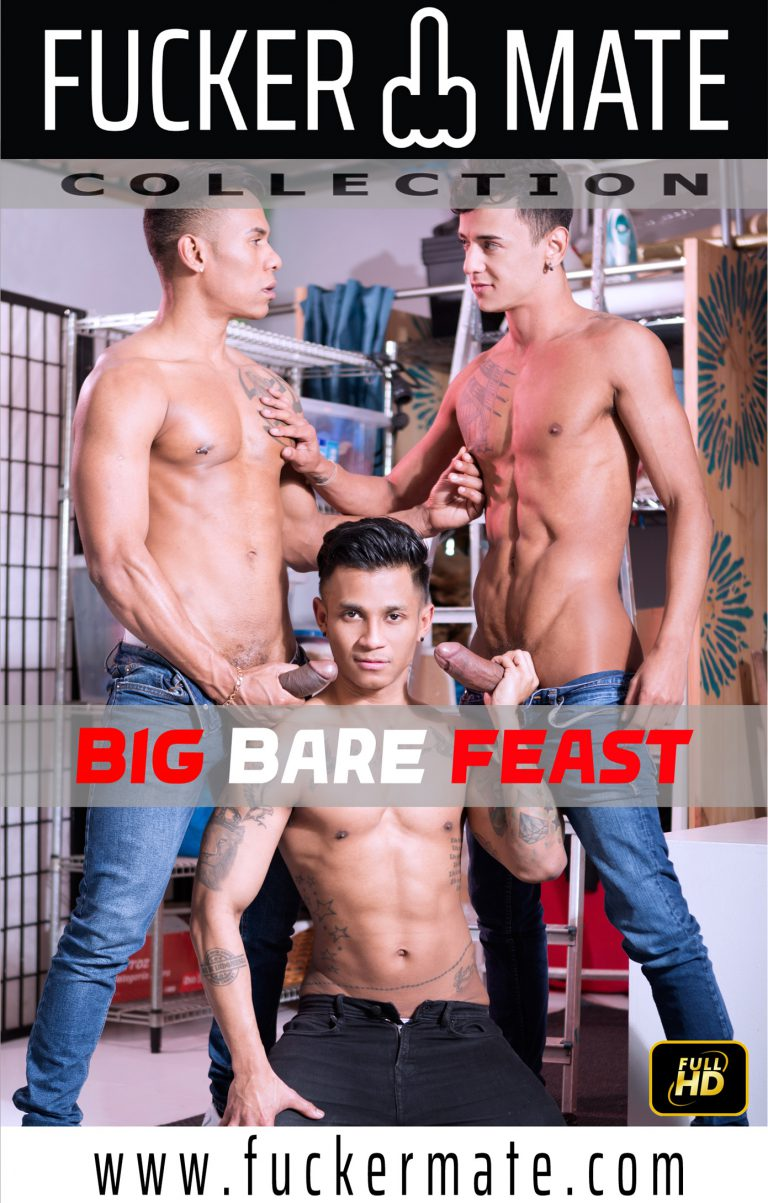 BIG BARE FEAST front cover image