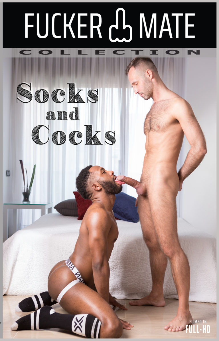 SOCKS AND COCKS front cover image